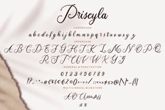 Priscyla Luxury Script Product Image 3