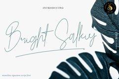 Bright Salkiy Product Image 1