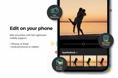 20 Silhouette Lightroom Presets & LUTs Product Image 4