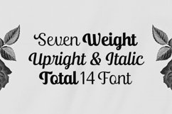Ralsteda Script - Font Family Product Image 2