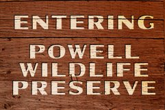 Powell   Rugged Display Typeface Product Image 6
