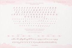 Rixiline Script Product Image 4