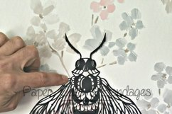 Bug insect papercutting sublimation graphic illustration Product Image 2