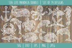 Sea Life Mandala Zentangle Bundle Set of 14 - SVG Product Image 1