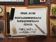 Popular handwritter decorative script Product Image 2