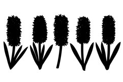 Hyacinths silhouettes. Flowers silhouettes. Hyacinth SVG. Product Image 2