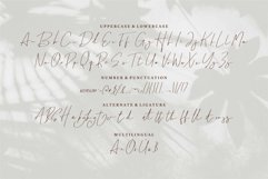 Web Font Brightly - A Signature Font Product Image 4