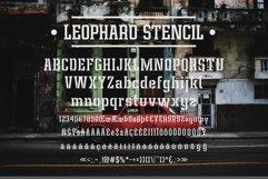 Leophard Font Family Product Image 6