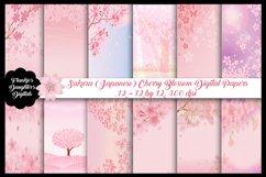 Sakura Japanese Cherry Blossom Digital Papers Product Image 1