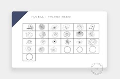 20 Procreate Floral Stamps Vol. 3 Product Image 2