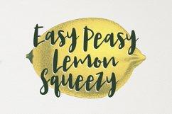 Lemon Juice Script Font Product Image 4