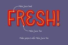 Melon Juice - Freshty Font Product Image 6