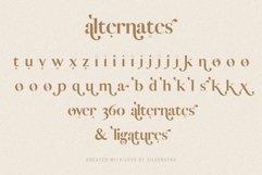 Vicky Christina - Chic & Stylish Ligature Serif Font Product Image 4