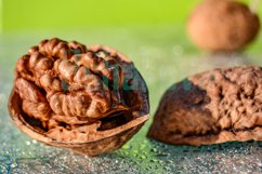 Walnut. Light green background. Macro. Product Image 2