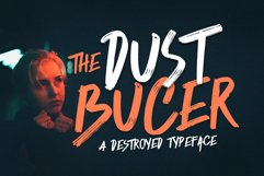 Dust Bucer Product Image 1