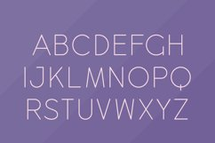 Dingle Dangle Font Duo Product Image 6