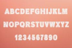 Flowers Slab Font Product Image 4