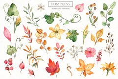 Watercolor Pumpkins. Clipart, cards, seamless patterns Product Image 8