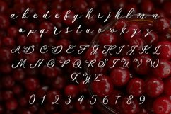 Cranberry Product Image 2