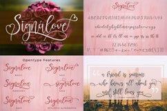 Best Seller Calligraphy Font Bundle Product Image 16