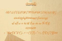 Acronits Script Font Product Image 6