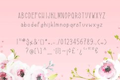 Farmerski font Product Image 4