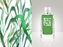 Tall herbs | patterns & motifs Product Image 5