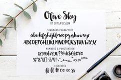 Modern brush font - Olive Sky Product Image 6