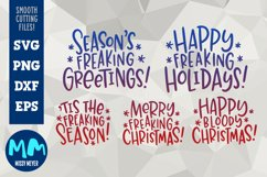 Rude Freaking Holiday Greetings - Christmas and Winter SVGs Product Image 1