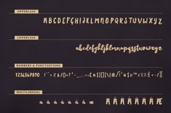 Amsterdam Script Product Image 9
