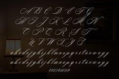 Web Font Faradisa Script Product Image 2