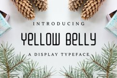 Web Font Yellow Belly Product Image 1