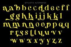 Hamachi Font Product Image 2