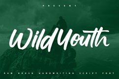 Wildyouth   Brush Handwriting Script Font Product Image 1