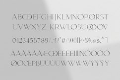 Magnolia. Modern Serif Font Product Image 5