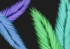 Fuzzy Feathers PNG Product Image 3