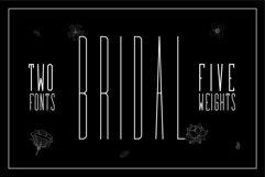 Bridal - Sans Serif Font Family Product Image 1