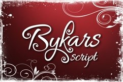 Bykars Product Image 1