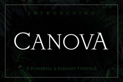 Web Font Canova Product Image 1