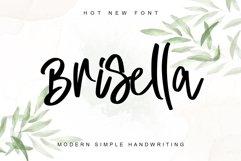 Brisella Product Image 1
