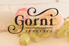 Gorni Typeface Product Image 1