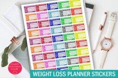 Weight Loss Tracker Stickers-Weight Planner Stickers Product Image 1