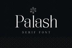 Palash - Serif Font Product Image 1