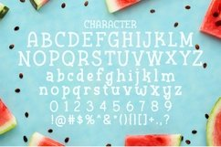 Web Font Last Day Product Image 2