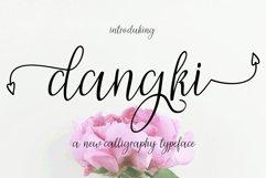 Dangki Script Product Image 1