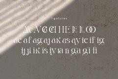 La Obrige Serif Font Product Image 2