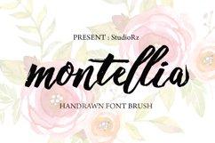 Montellia Brush Product Image 1