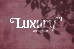 Pulchella Bold Serif Font | New Updates Product Image 5