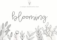 Blooming - Handwritten Font Product Image 1