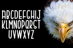 Eagle Eyes Product Image 4